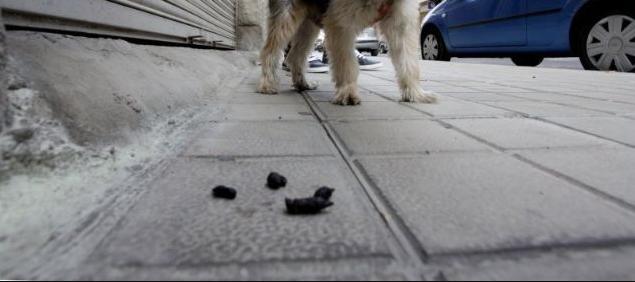 Valorar el servei La limpieza de las calles en Tarragona